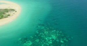 Massive Korallensterben am Great Barrier Reef kündigte sich bereits im März an
