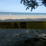 Crocodile Warning - Cape Tribulation