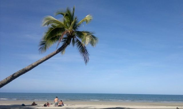 Dream beaches in Cape Tribulation
