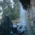 Springbrook National Park - Waterfall Australia