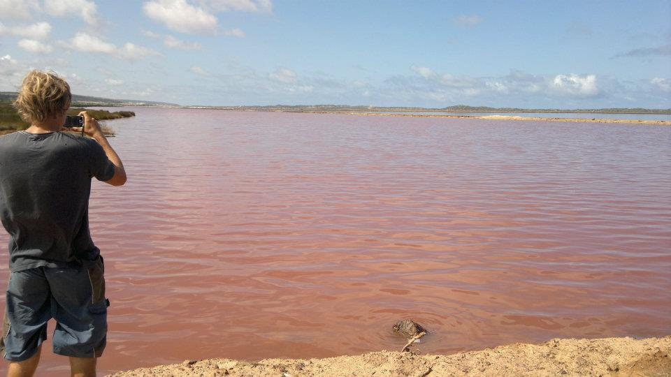 Pink Lake - South of Kalbarri