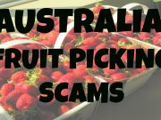 Australia Fruit Picking Scams