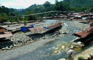 Bukit Lawang - Orang Utans - Sumatra